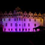 Pinkifizierung_Schloss_Mädchentag_2016 (1)