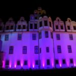 Pinkifizierung_Schloss_Mädchentag_2016 (14)